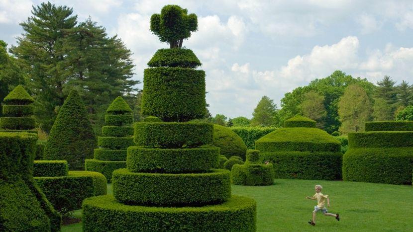 садовые фигуры топиари