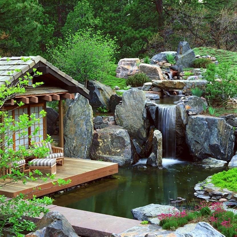 цветы водопад для дачи фото скоплений