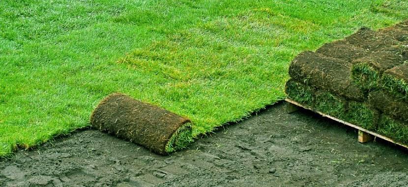 состав земли для газона