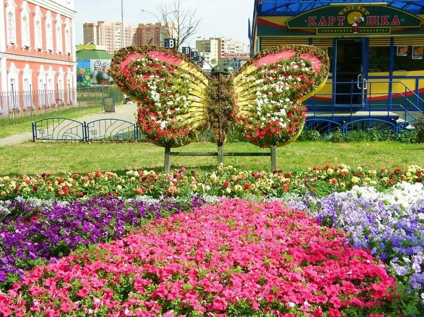 клумба в виде бабочки