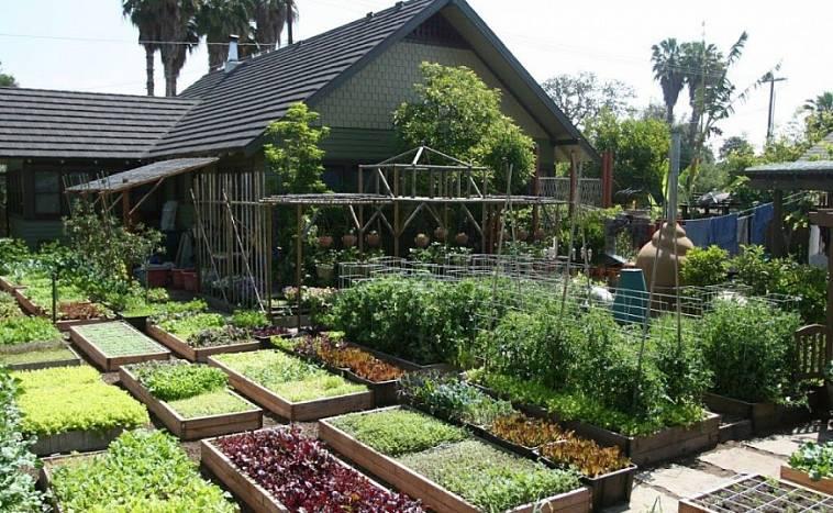 Огород что можно строить