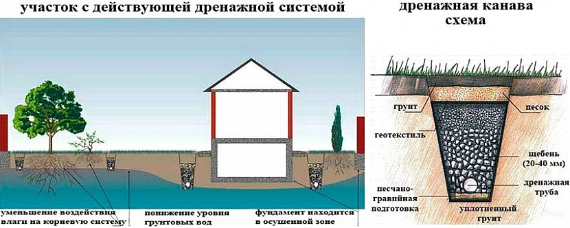 дренажные системы для отвода грунтовых вод
