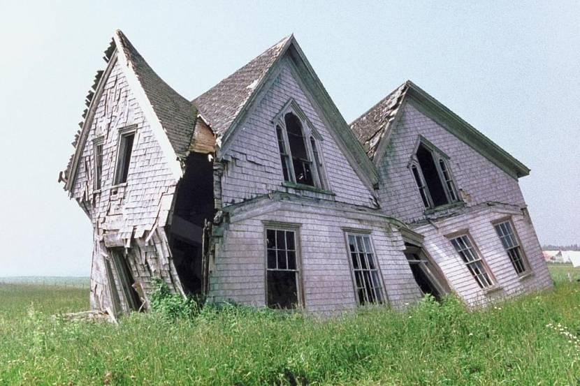 Строительство дома – выбор компании