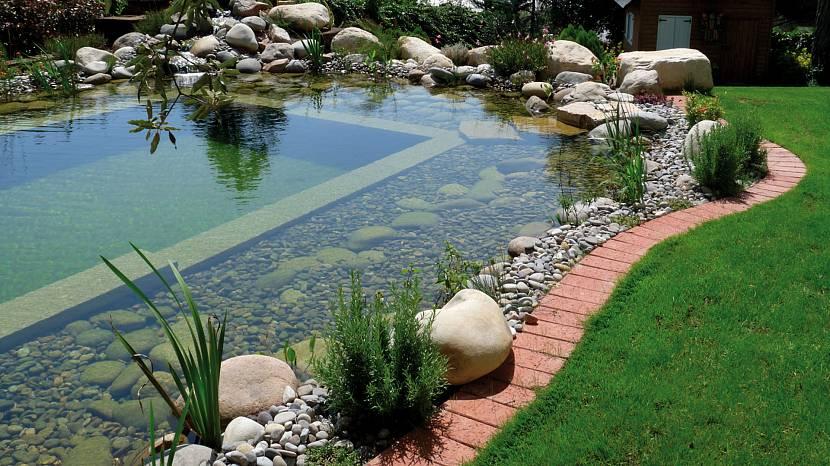 Домашний пруд