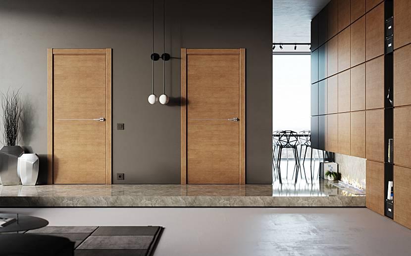 Двери без декора