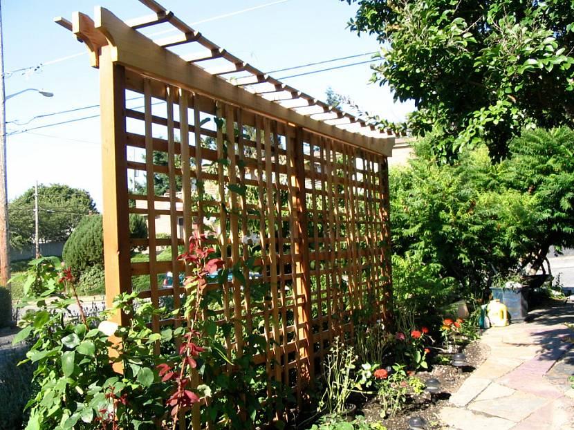 Дачники сооружают опоры для виноградников