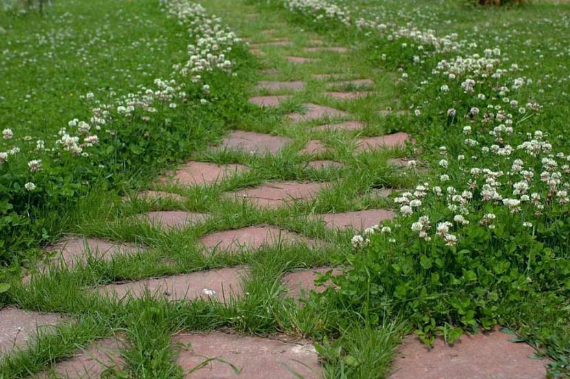 Окаймление садовой дорожки