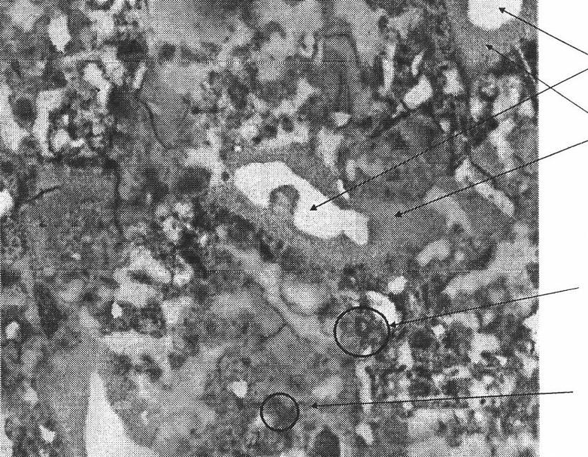 Структура цемента под микроскопом