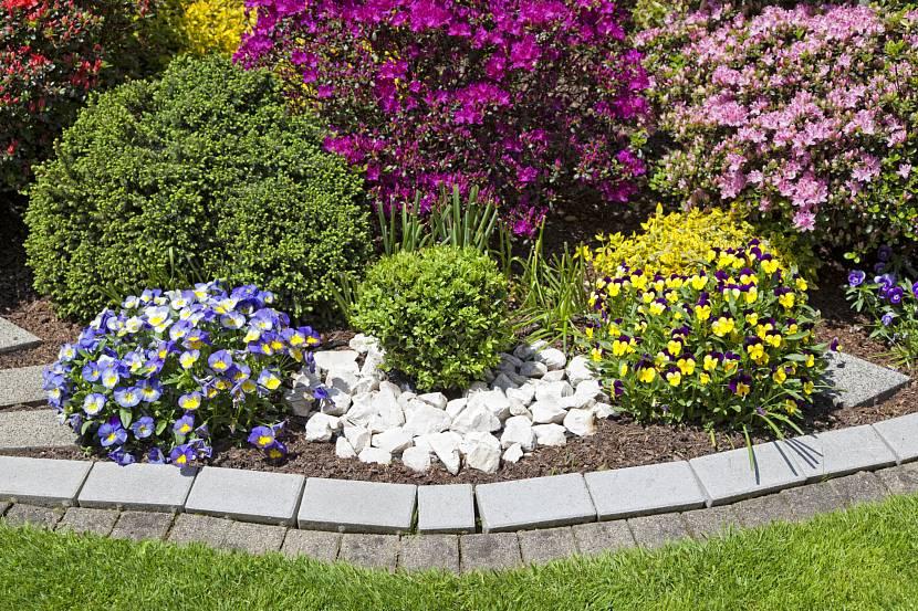 Примеры оформления клумб и цветников фото