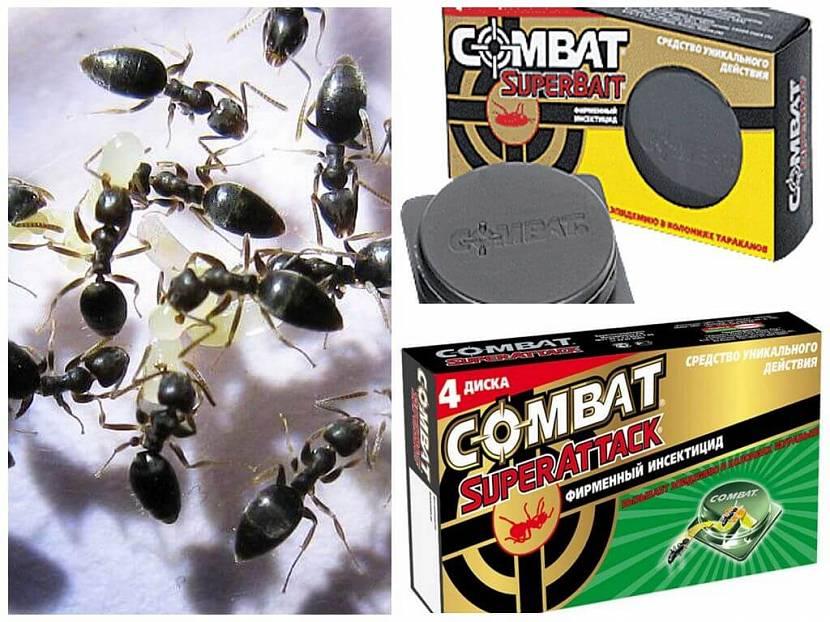 «Combat SuperAttack»