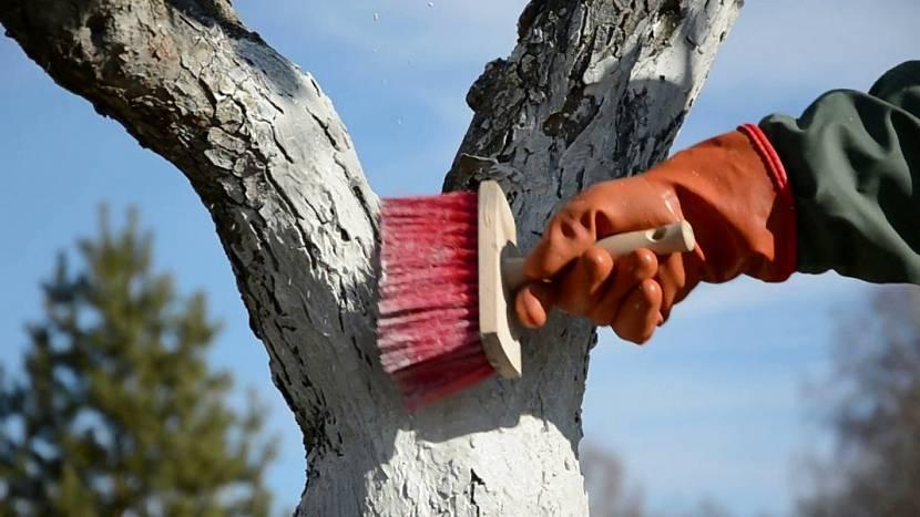 Травление дерева