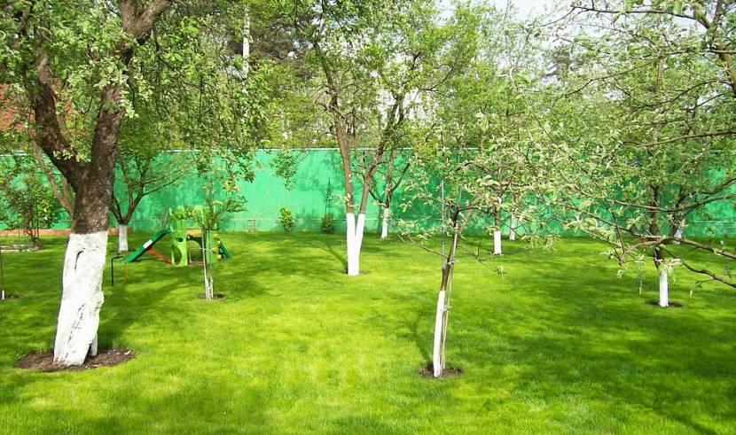участок под садоводство можно ли строить дом