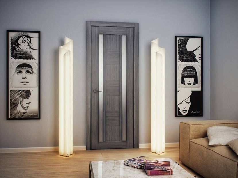 Стильная темно-серая дверь