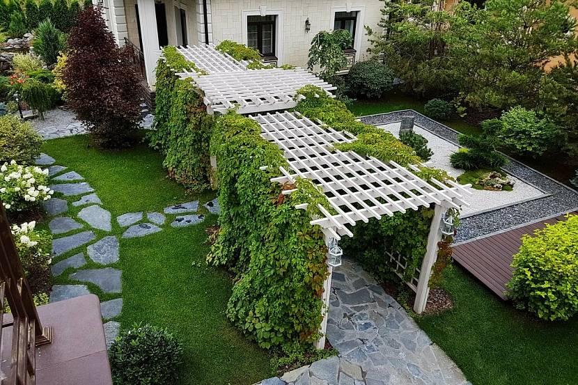 девичий виноград в ландшафтном дизайне горизонтальное использование