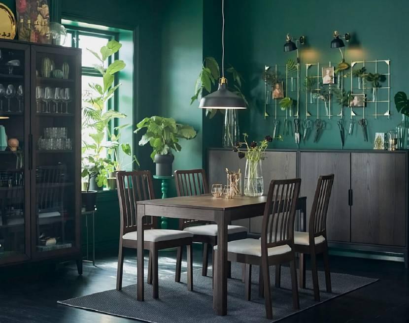 Растения в дизайне с мебелью