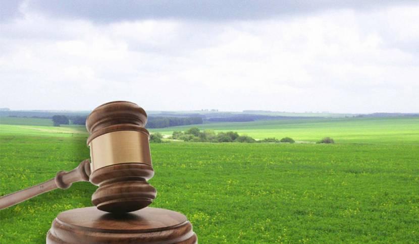 Покупка участка земли под ИЖС – что нужно знать