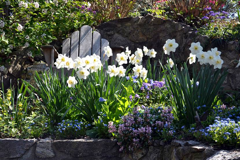 необходимые цветник весной фото скоро год
