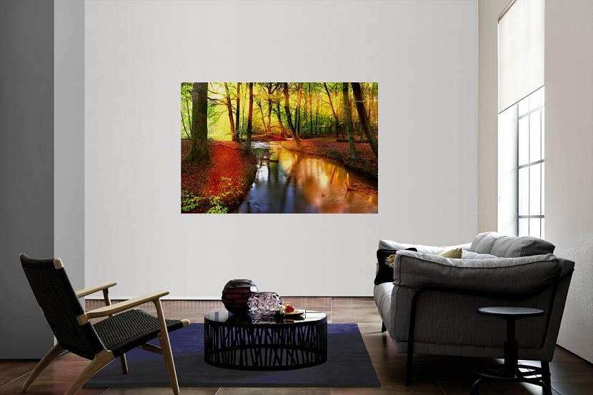 Фотообои на белой стене