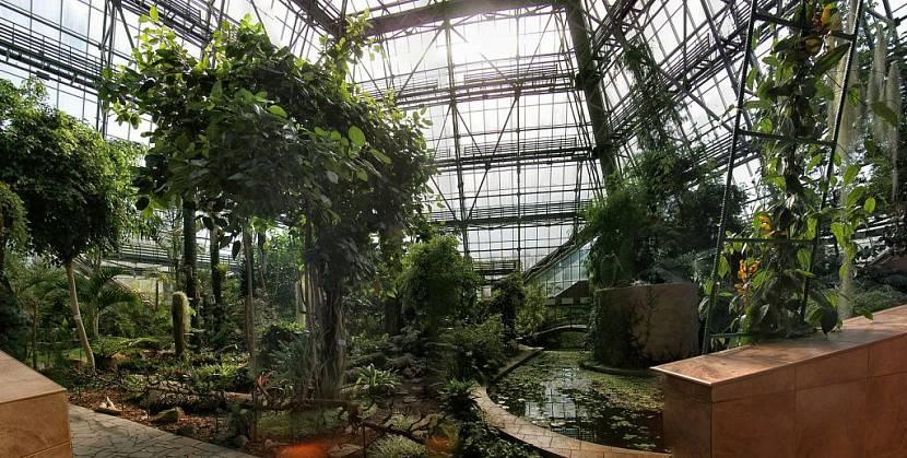 Оранжерея - отдельное строение, как правило, размещенное в саду