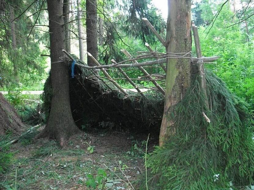 Крыша односкатного шалаша тщательно заделывается ветками и травой