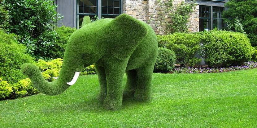 Садовые зеленые топиарные фигуры