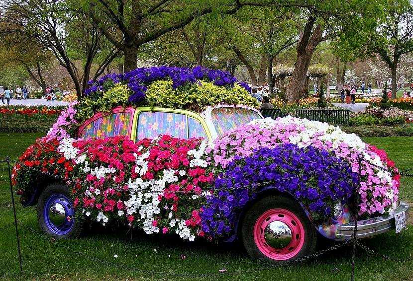 машина с цветами картинки красивые