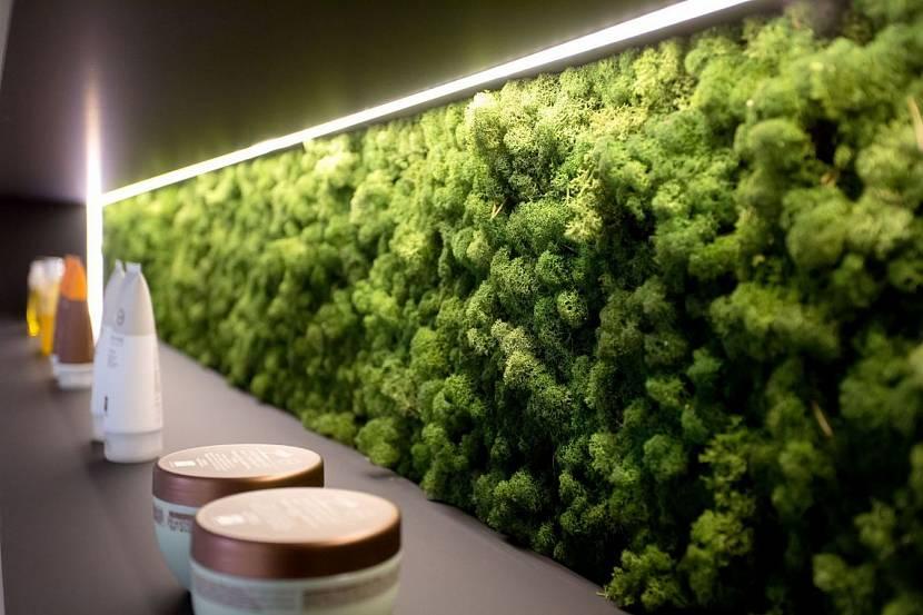 Законсервированный мох в декоре