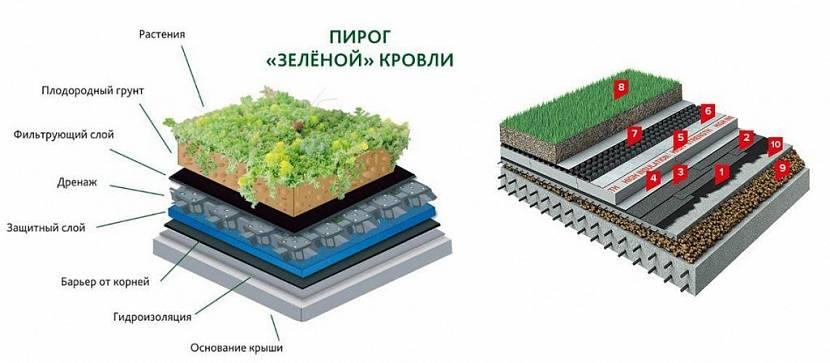 зеленая крыша технология