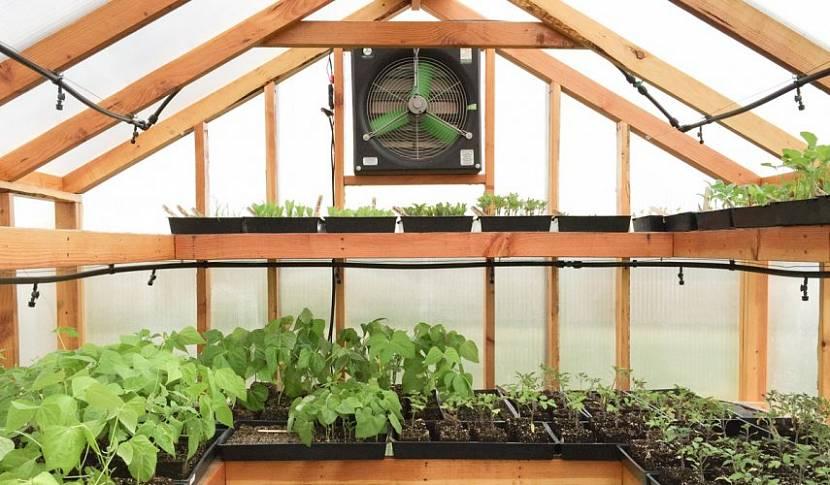 Теплица, позволяющая выращивать растения в 3 яруса
