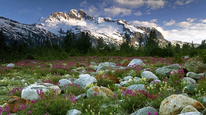 Вид настоящих Альп