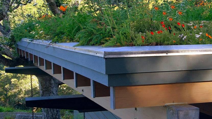 преимущества зеленой крыши