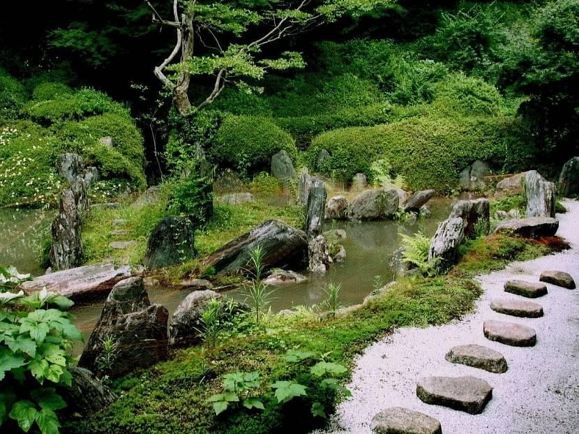 Камни возле водоема