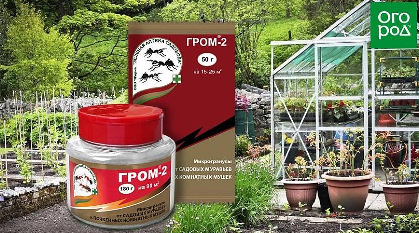 «Гром 2» для защиты сада