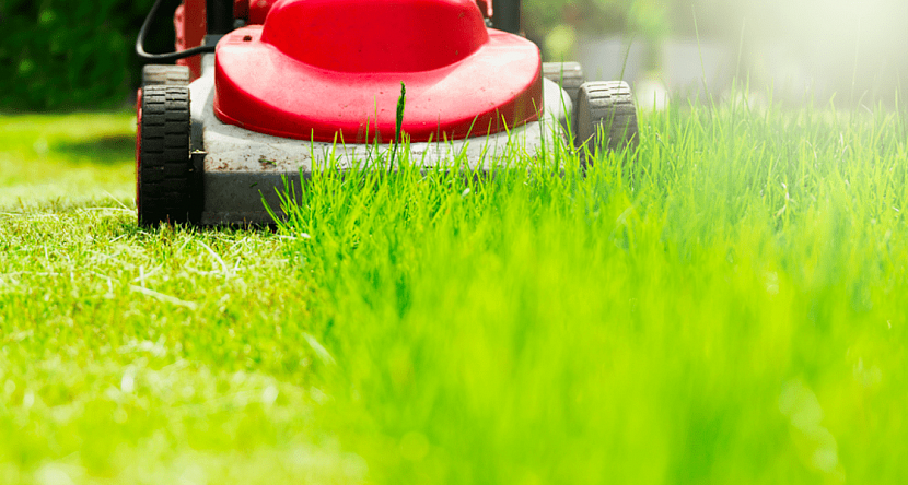 Использование газонокосилки