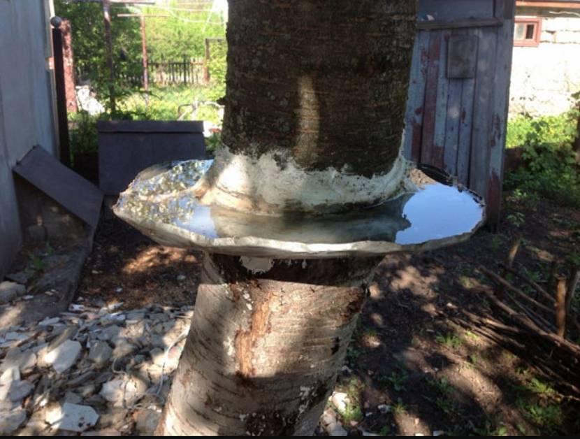 Обустройство водной преграды