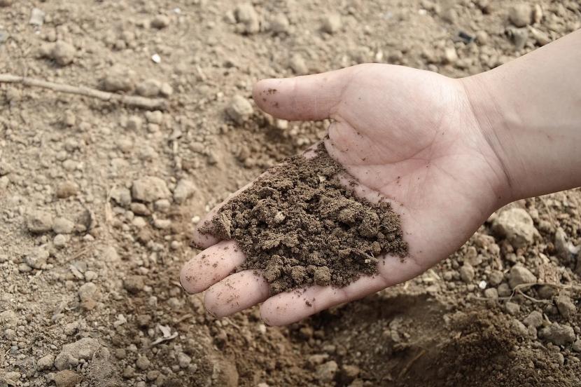 Песчаный грунт