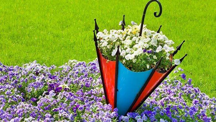 Ландшафтный дизайн сада на загородном участке