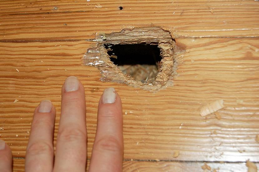 Дыра в деревянной стене