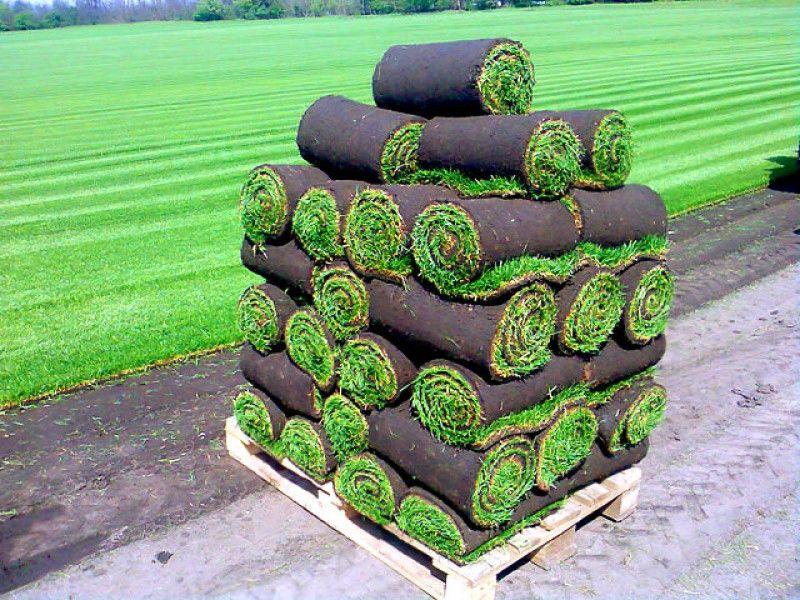 сколько весит рулон газона