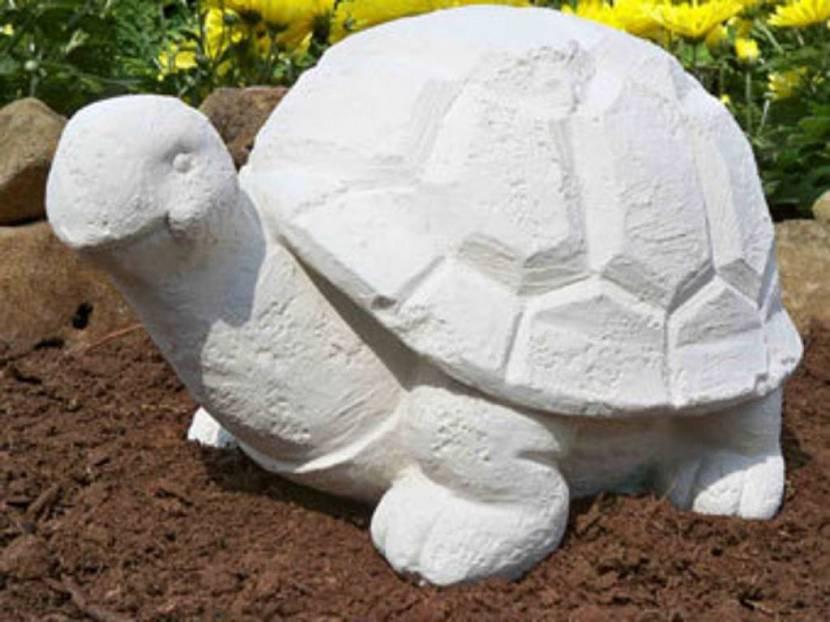 Черепаха садовая